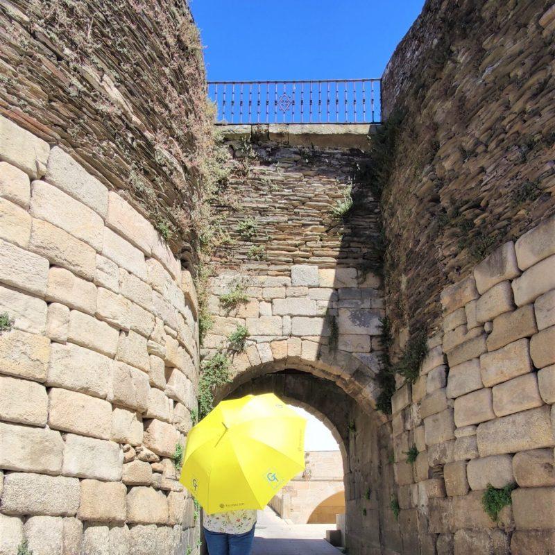 Porta Miñá (2)